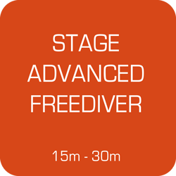 Stage Apnée Advanced Freediver du 17 au 19 mai 2019