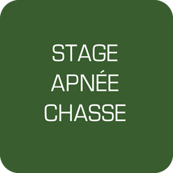 Stage chasse sous-marine le 5 aout 2018